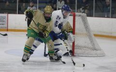 Blue Devils Boys Hockey Season Looks Promising