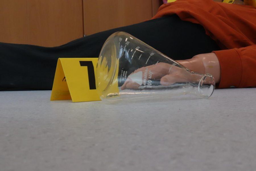 Students are investigating a crime scene in Mrs. Hartsoe